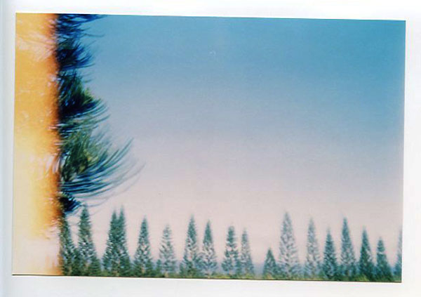 North Shore, Hawaii - Lomo Smena 8M. © 2011 Bobby Asato