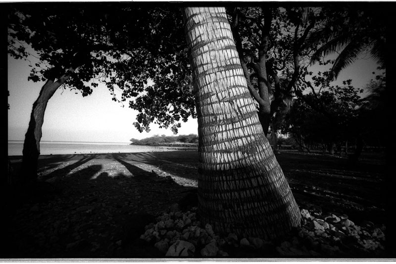 Big Island, Hawaii. Canon A-1. © 2011 Bobby Asato
