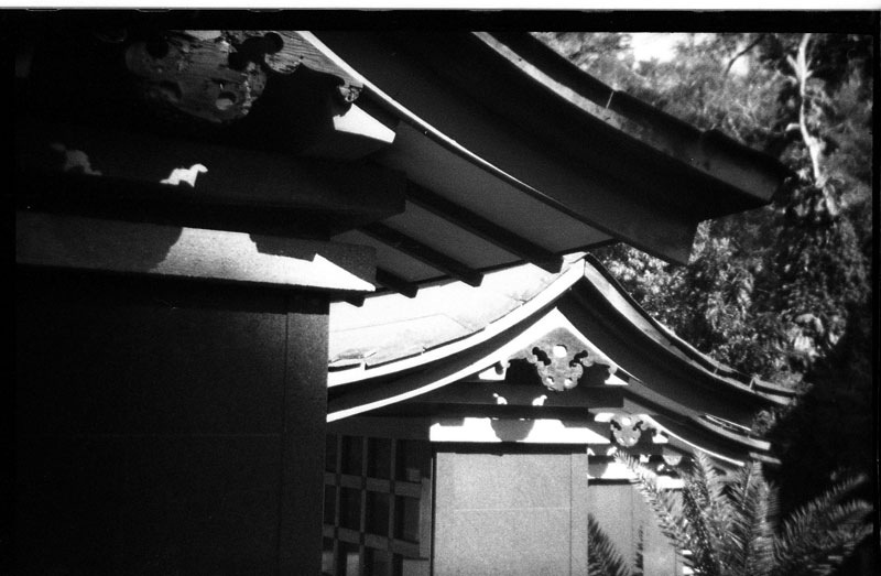 Kyoto Gardens of Memorial Park, Nuuanu, Honolulu, Hawaii. Holga 135. © 2011 Bobby Asato