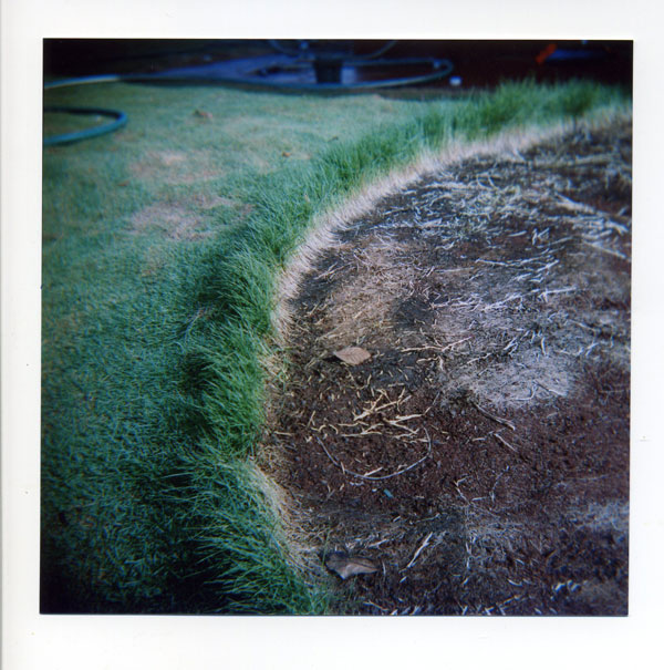 Bowling Grass-Wave. © 2010 Bobby Asato